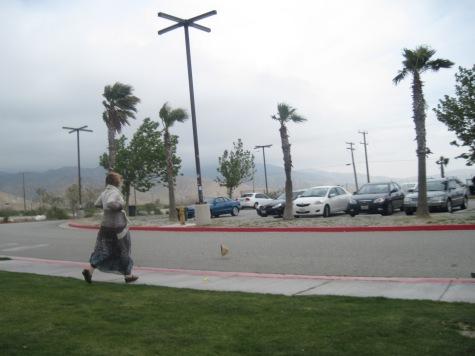 The Coachella Flat Stanley 270